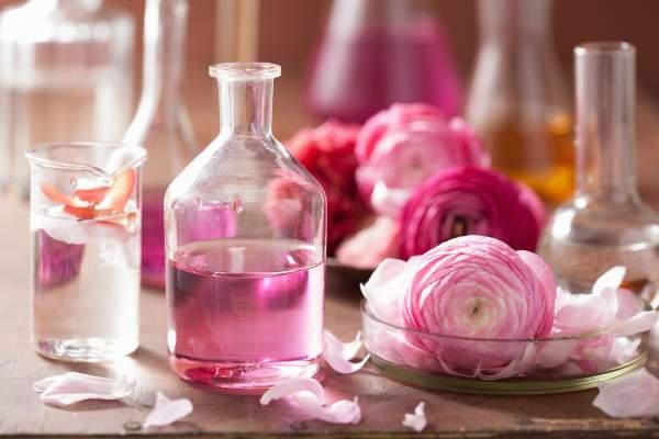 Parfüm Notaları Nelerdir