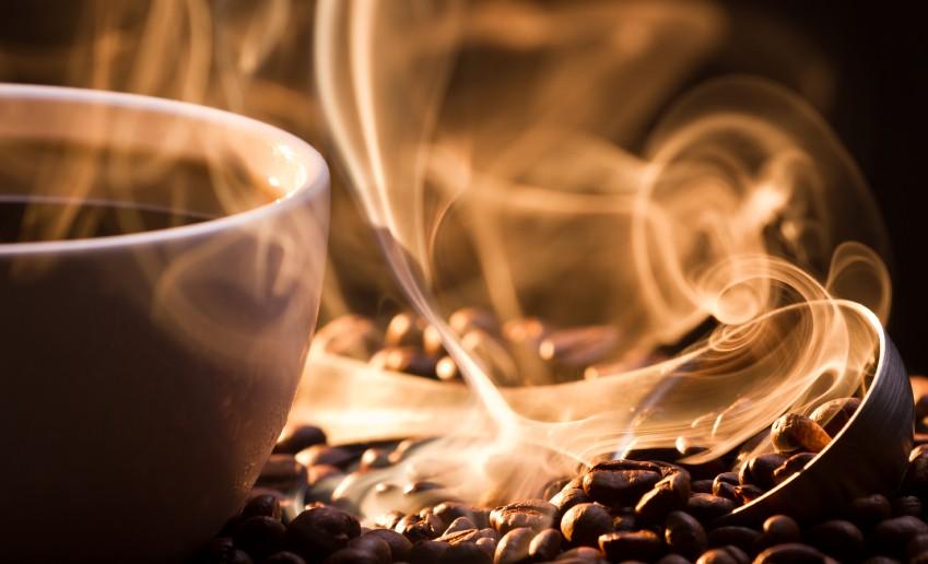 Dünyanın En Pahalı Kahvesi: Kopi Luwak
